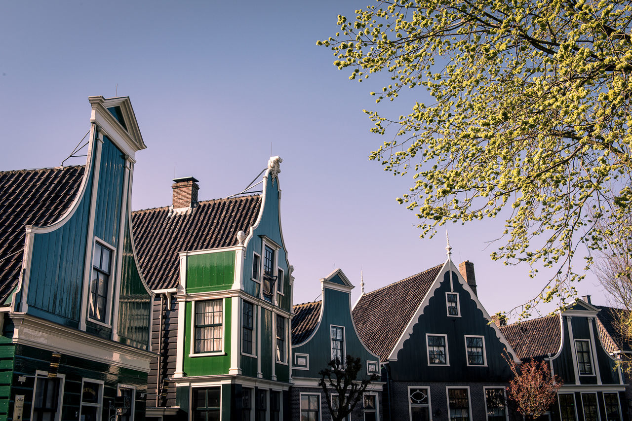 architecture, building exterior, built structure, outdoors, tree, day, no people, clear sky, low angle view, city, sky