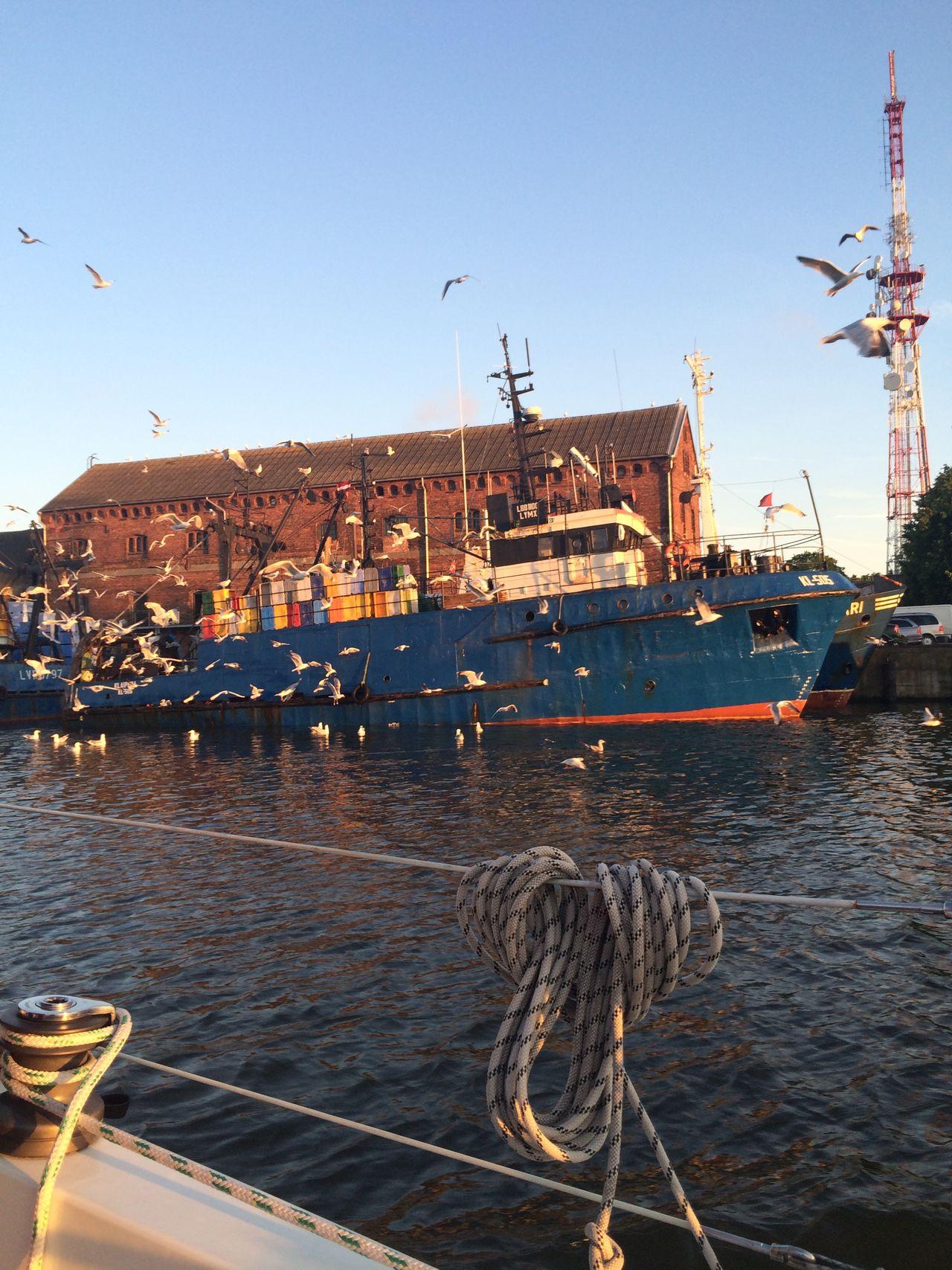 Fishing Boat Harbour PolLitLett2015