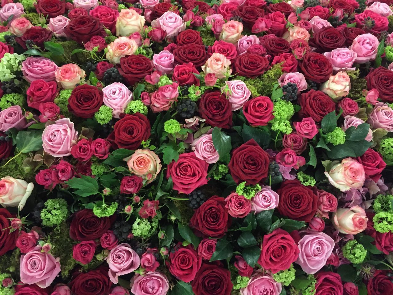 Rose flower background Flower Fragility Abundance Freshness Full Frame Beauty In Nature Petal Nature Backgrounds Rose - Flower Red Flower Head Large Group Of Objects Pink Color No People Outdoors Close-up Flower Market Bouquet Day Mothers Day Valentine's Day  Blossom Flower Arrangement Red