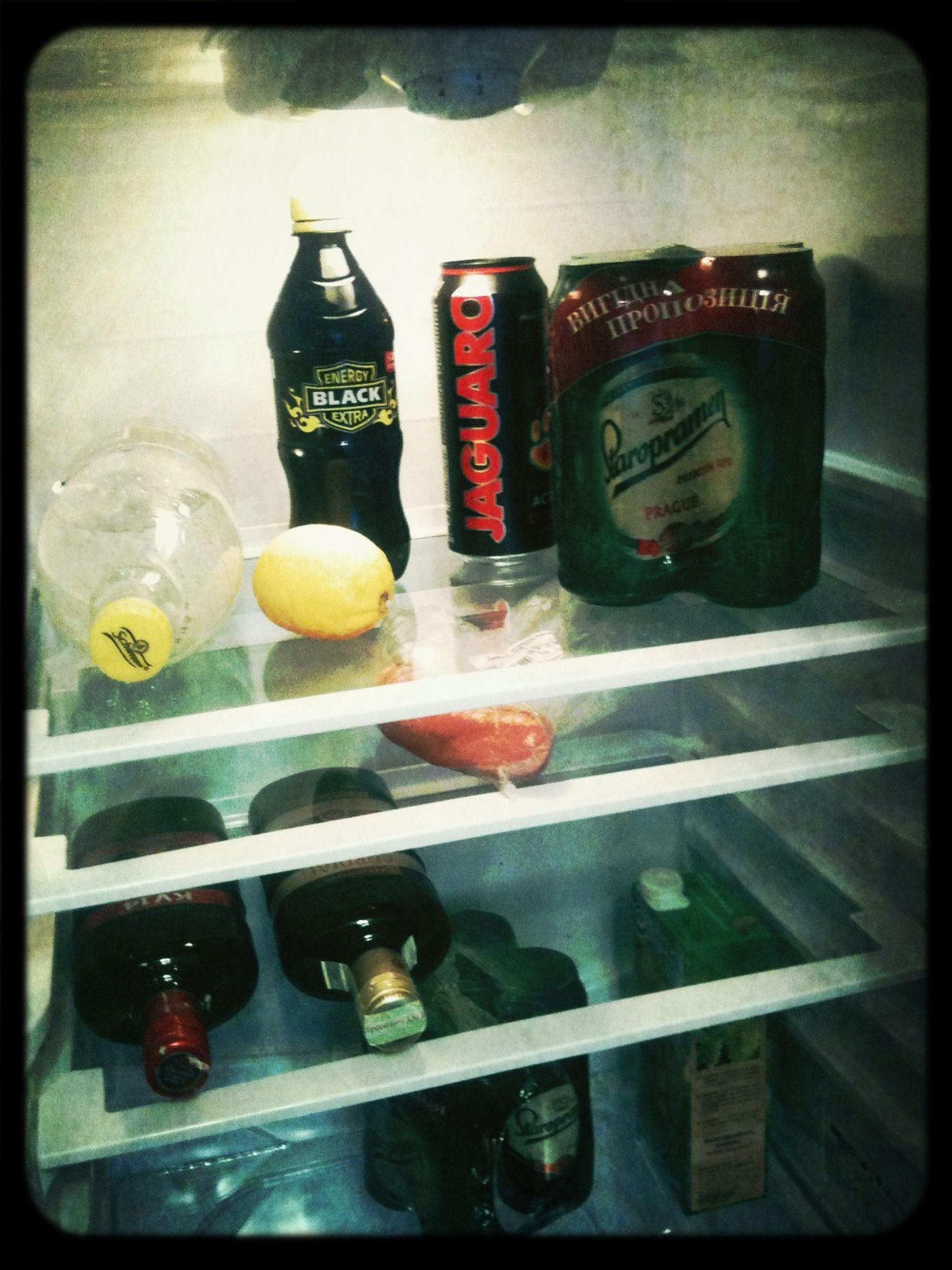 Холостяцкий холодильник