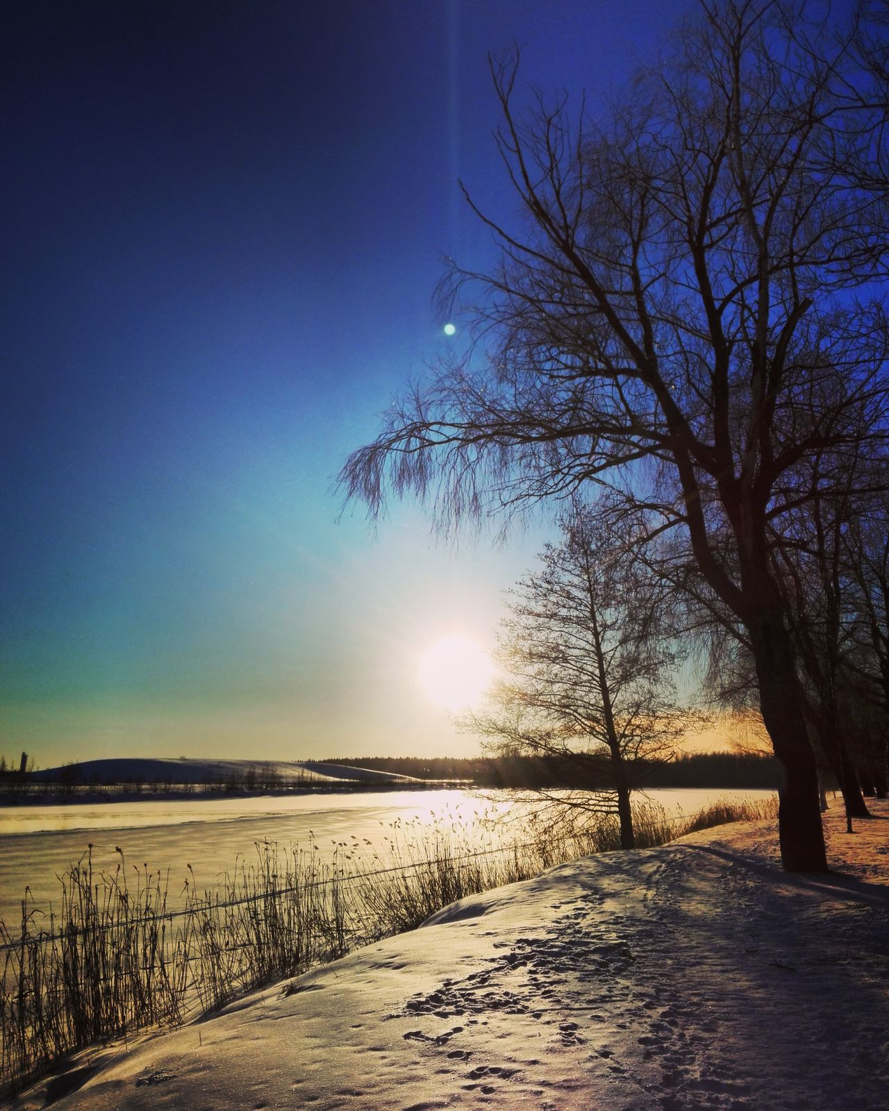 Sunnyday Tree Sky Nature Sunset Beauty In Nature Landscape Snow ❄ Daytime Wintertime Landscape_photography Photography Finnish Nature Nature Photography Photographer Outdoors Naturelovers Cold Temperature Winterwonderland Colorful Winter Landscape Lake View Naturebeauty