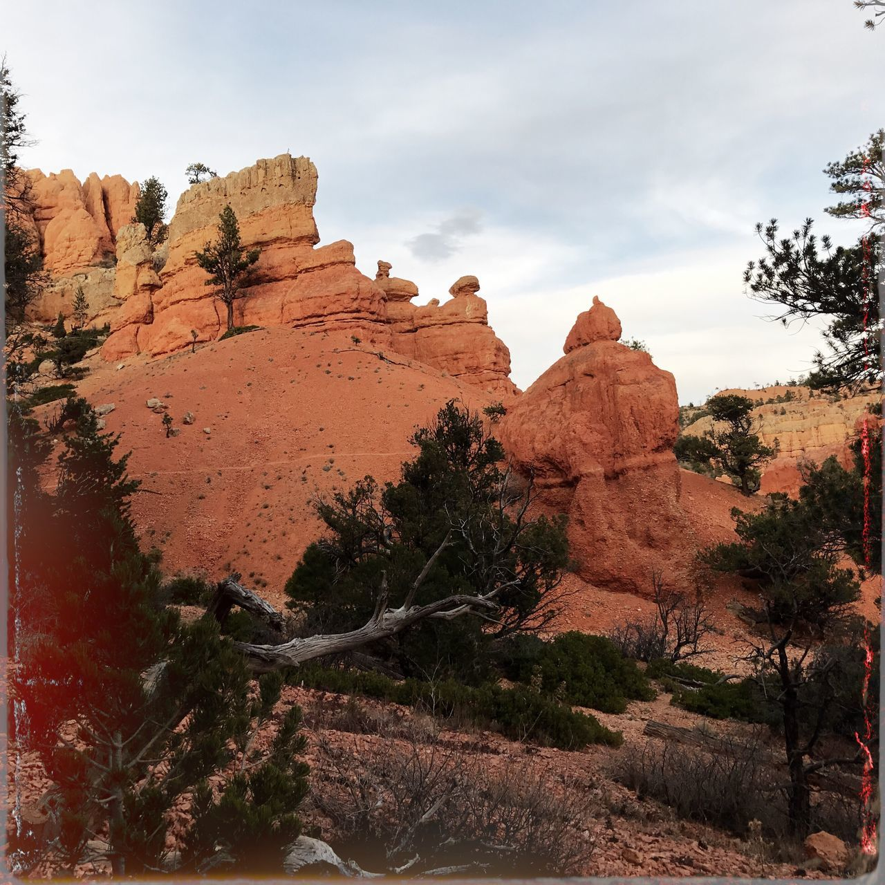 rock formation, tranquility, tranquil scene, nature, beauty in nature, rock - object, tree, scenics, sky, geology, outdoors, landscape, physical geography, no people, day, cliff, arid climate, mountain