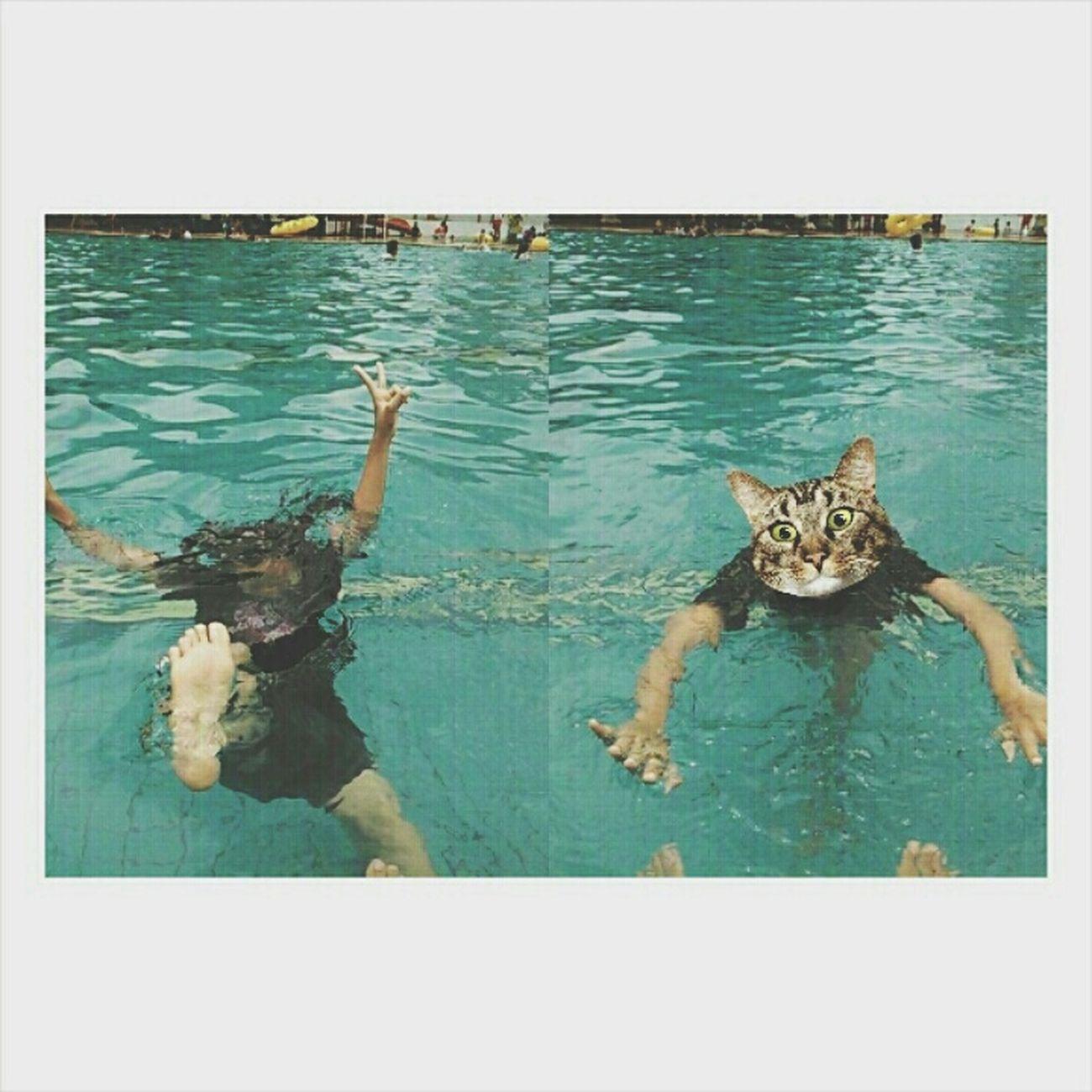 yesterday Swimming 🏊🙋