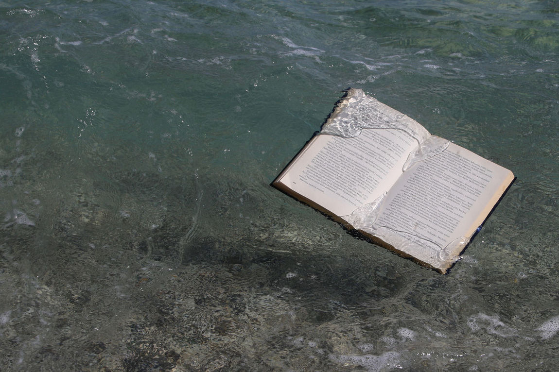 Abandoned Book Book In The Water Day Flotsam High Angle View No People Outdoors Seafood Swept Ashore Swept Away Swimming Water