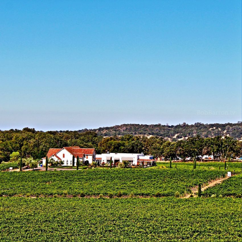 Filming in the AmadorCounty Wine Country.