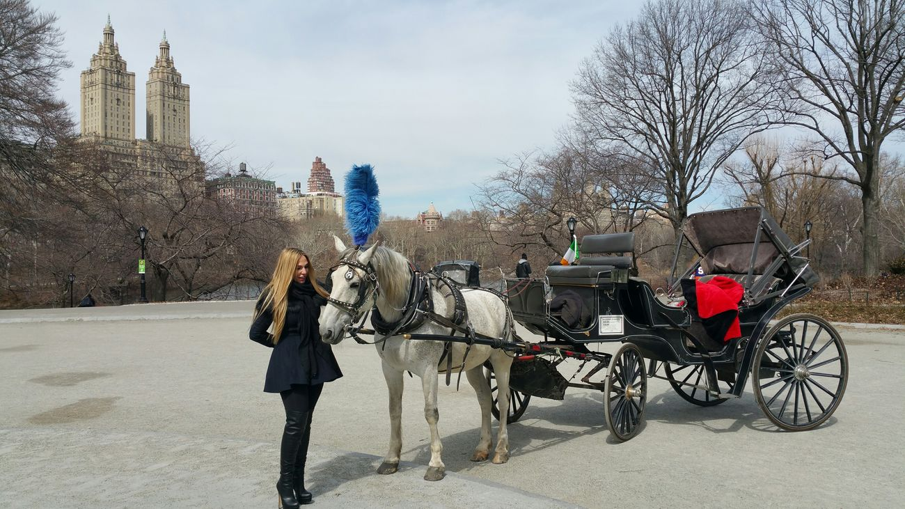 Visiting America...Horse and Carriage ride today 😉 Central Park... checkout my website at... http://anastasiaverkos.com America Newyorkcity Taking Photos Newyork Manhattan CentralPark Horse And Carriage Enjoying Life Live, Love, Laugh Hello World