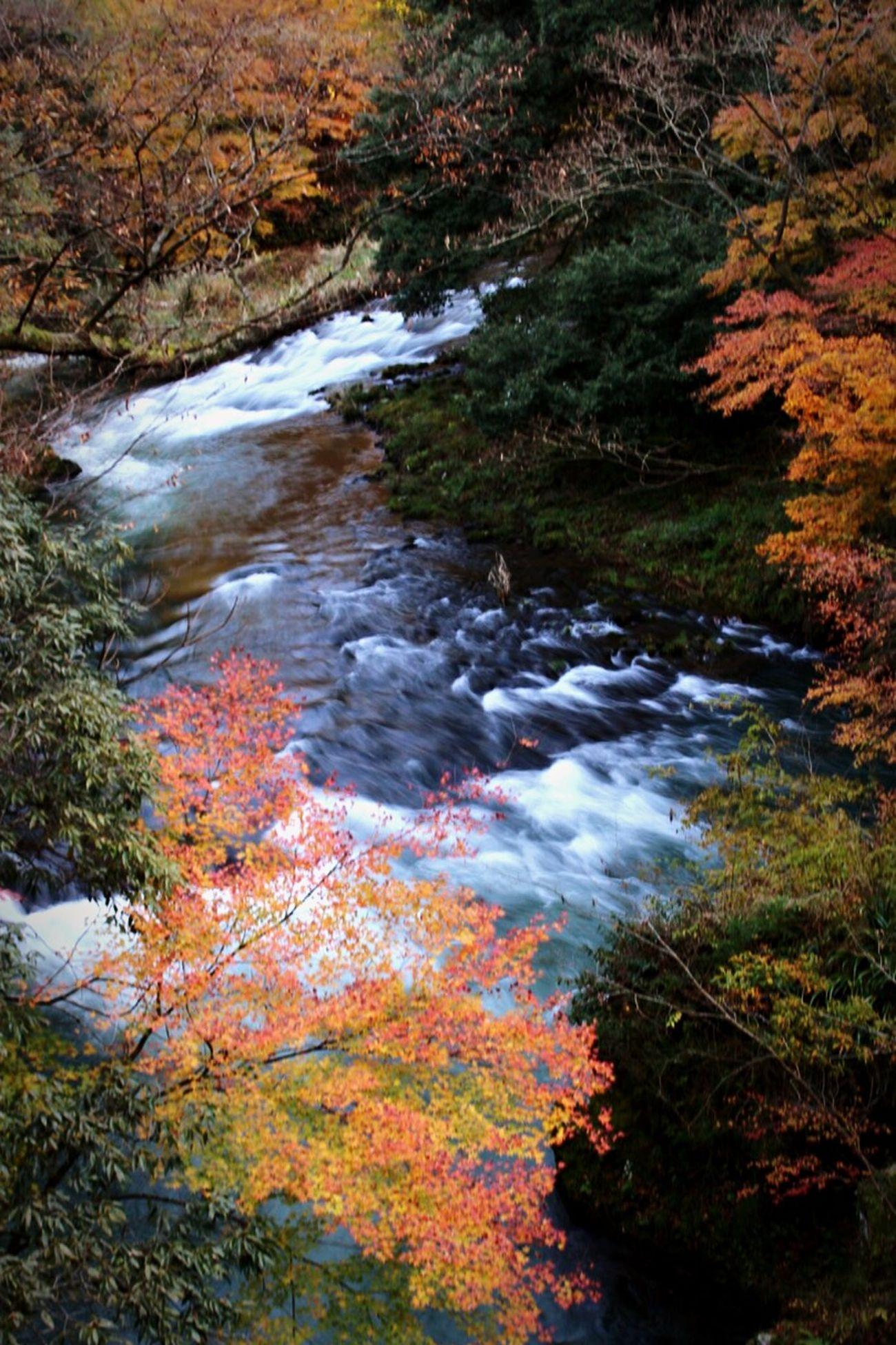Yamanaka Onsen Japan Photography Landscape River