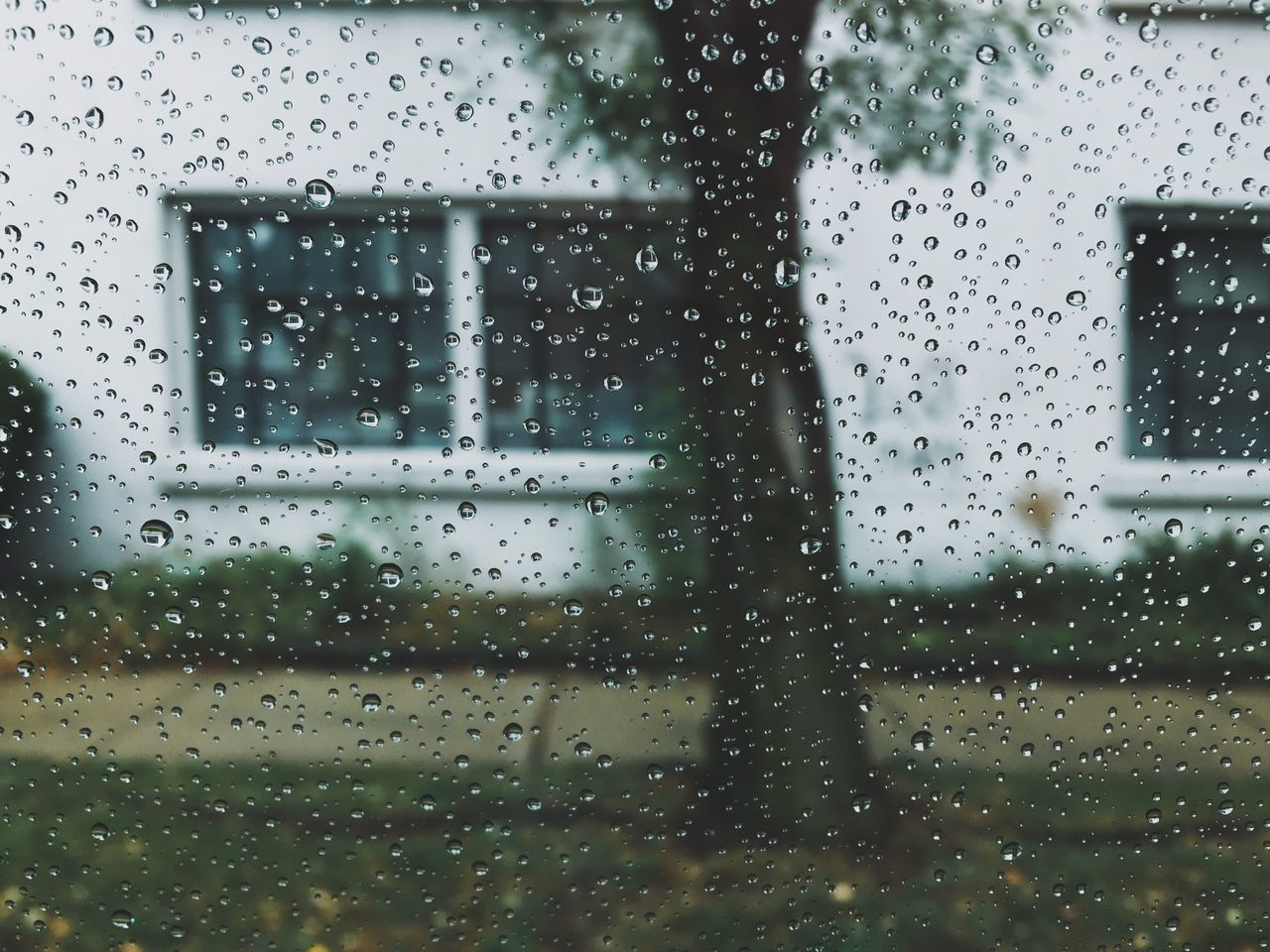 VSCO Rainy Day