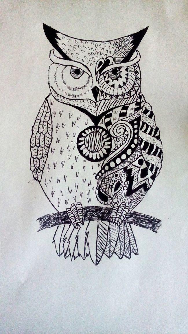 Coruja Corujas Coruja 💜 Owls💕 Owl Drawing Tattoo Drawing :) Owl Art