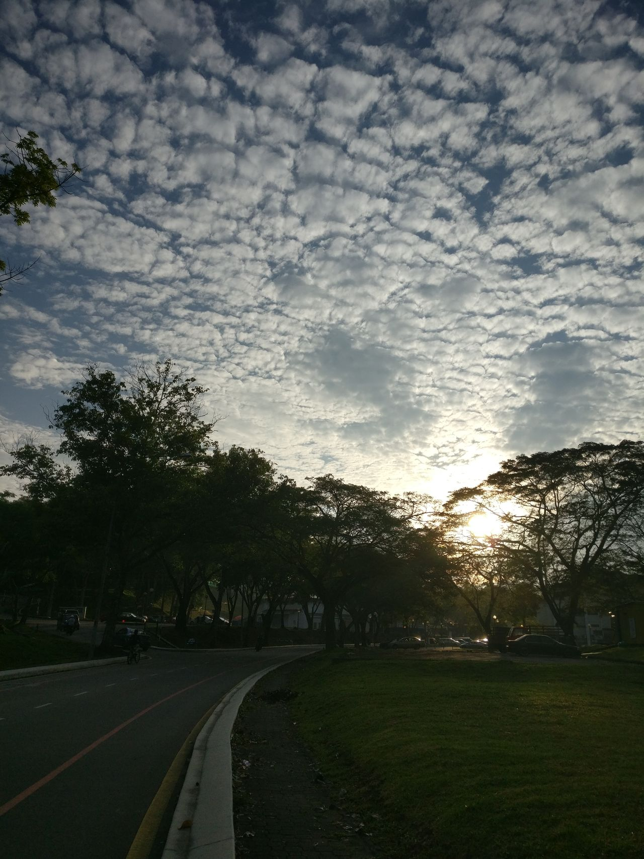 Morning at University Technology Malaysia Cloud Cloud - Sky Johor Malaysia Morning Nature Oneplus3 Road Sky Sun Sunlight Sunrise Tree Utm Utm Skudai