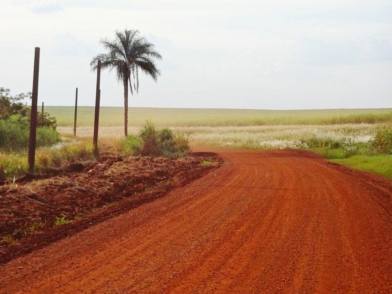 Brasil ♥ Natureza🍁 Estrada Rural Terra
