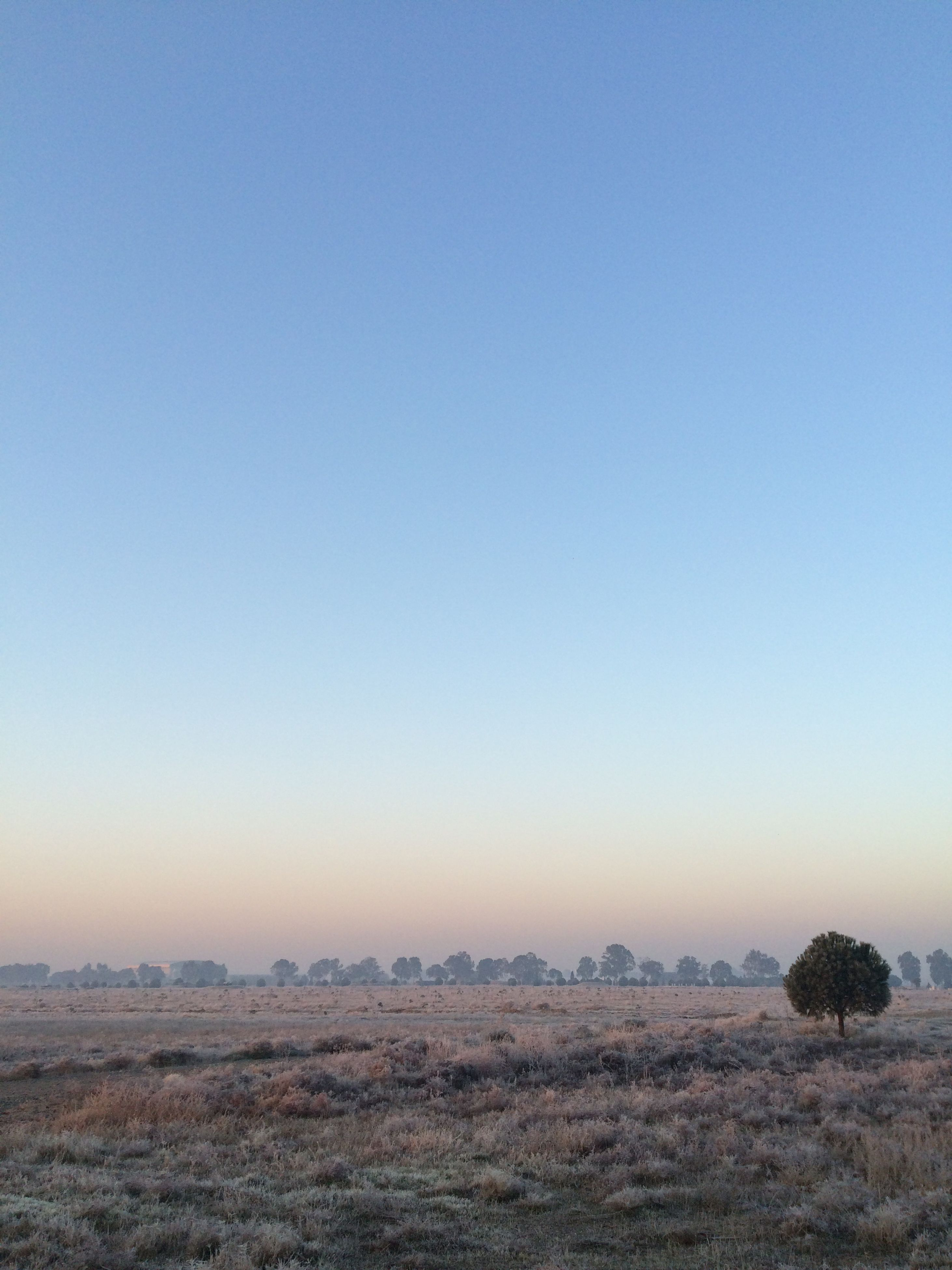clear sky, tranquility, nature, tranquil scene, scenics, beauty in nature, no people, landscape, outdoors, sky, day, agriculture