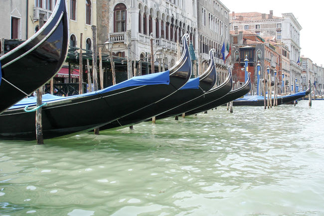 Canale Grande City Life Culture Engineering Famous Place Gondeln International Landmark Venedig Venedig Gondeln Venedig Gondeln