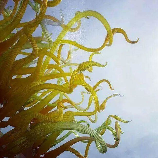 Chilhuly spirals... Glass Art Glass - Material Glass Chilhuly Chilhuly Glass Stlouis Stl Yellow Yellow Glass Blue Sky