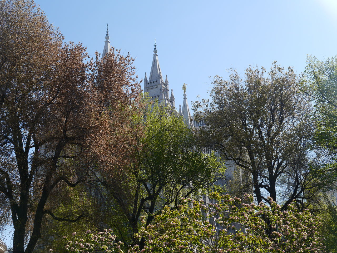 Day Outdoors Salt Lake City Summertime Temple Temple Square