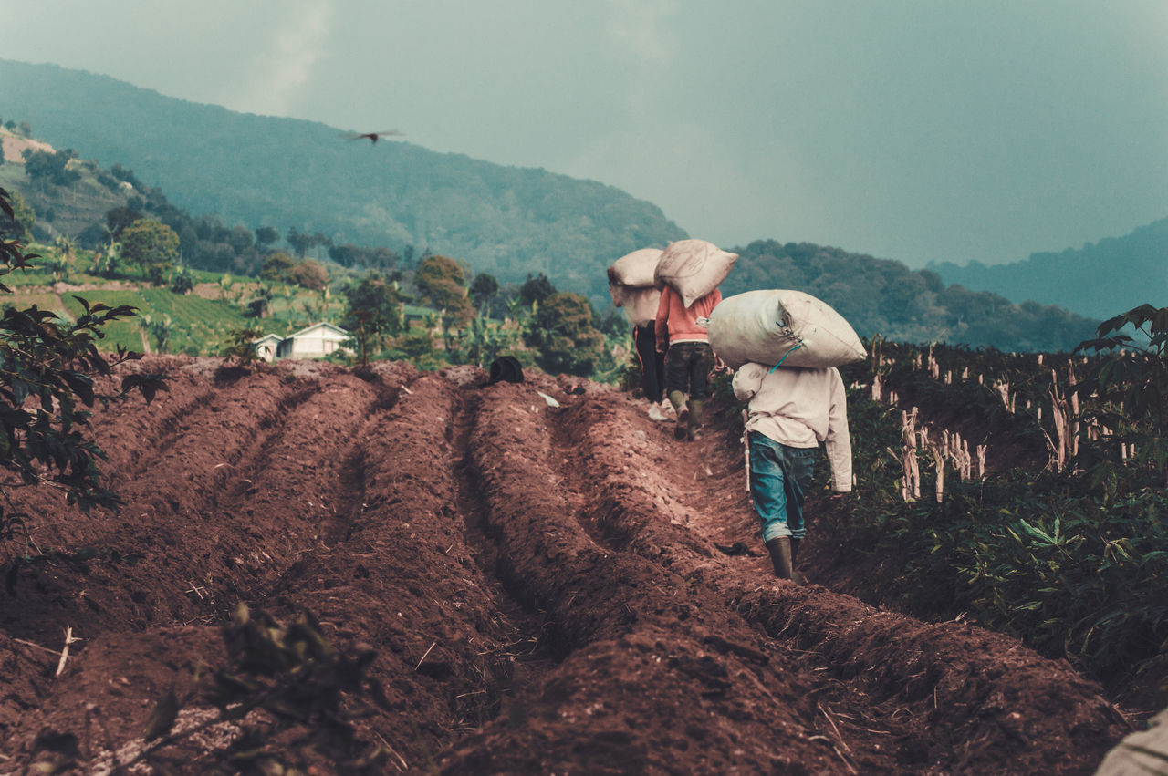 The Great Outdoors - 2017 EyeEm Awards Agriculture Occupation Field Farmer People Working Nature Mountain Outdoors Rural Scene Farm Worker Day Tree Sky Landscapes Freshness First Eyeem Photo Beauty In Nature Real People Real Life