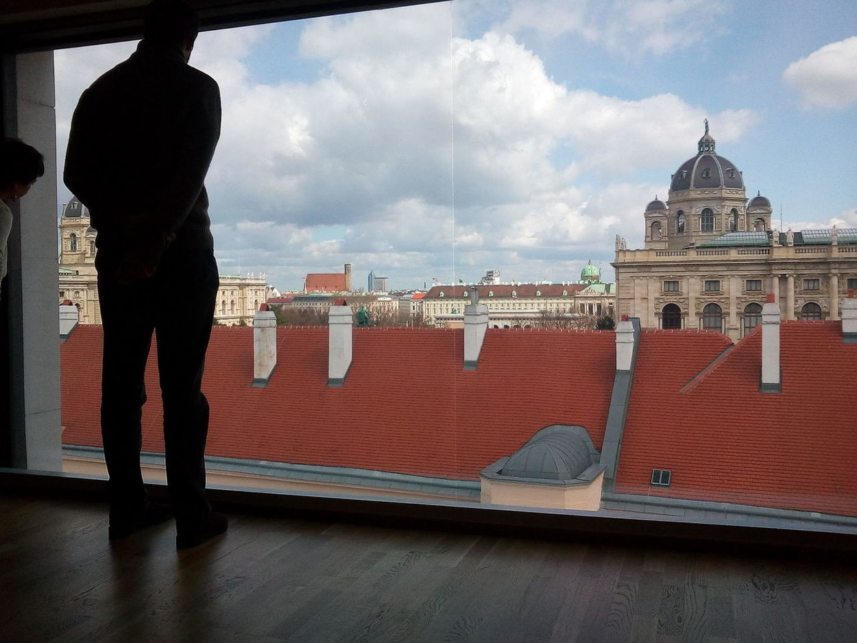 Architecture Built Structure Cloud - Sky City Dome Cityscape One Man Only View View From Above Watching Wien Leopold Museum Museum Window Window View Huge Window Exhibition Silhouette Roofs Roof Sky Curiosity Neighborhood Map Your Ticket To Europe