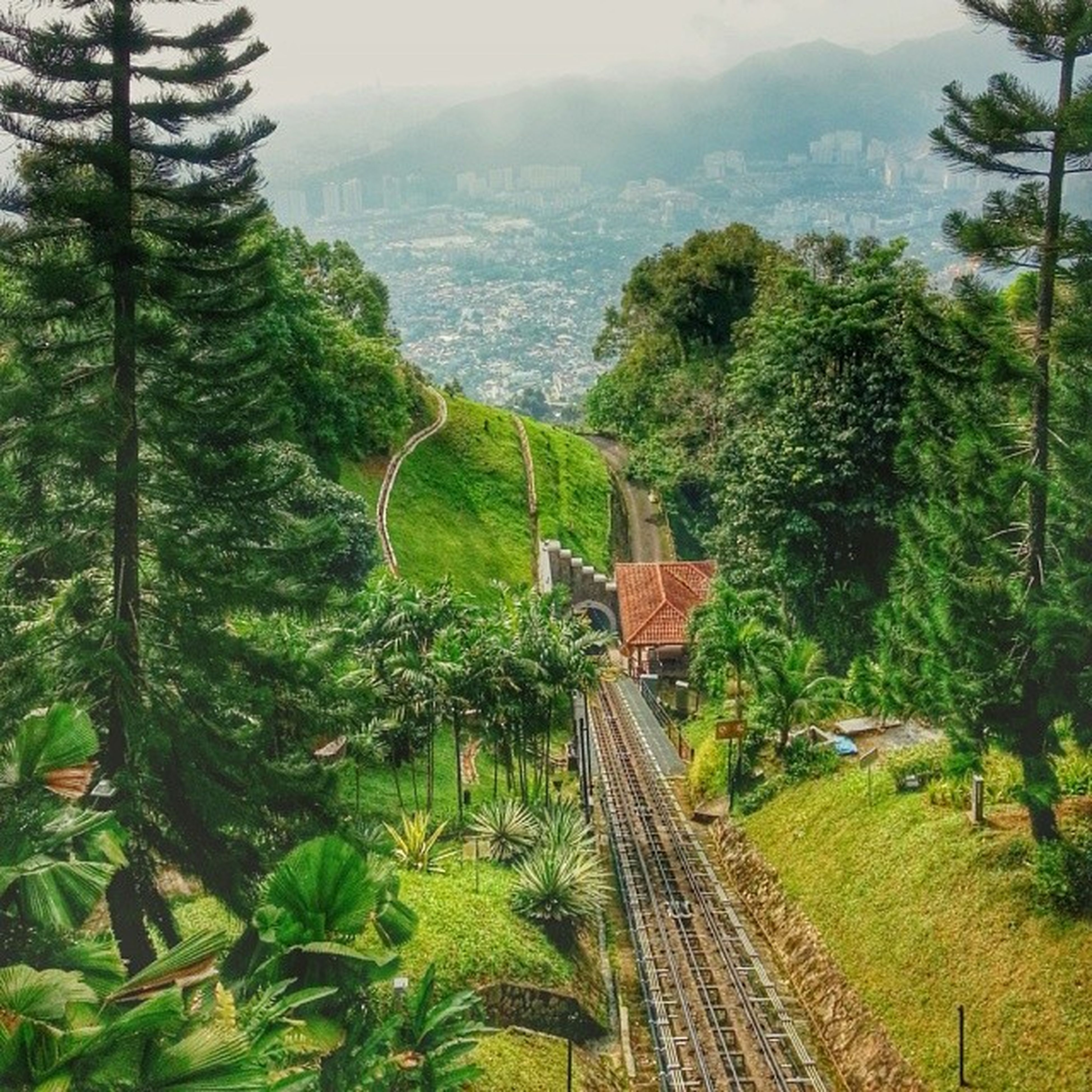 tree, green color, high angle view, growth, mountain, built structure, lush foliage, nature, landscape, tranquility, tranquil scene, transportation, architecture, railroad track, scenics, sky, the way forward, beauty in nature, rail transportation, plant