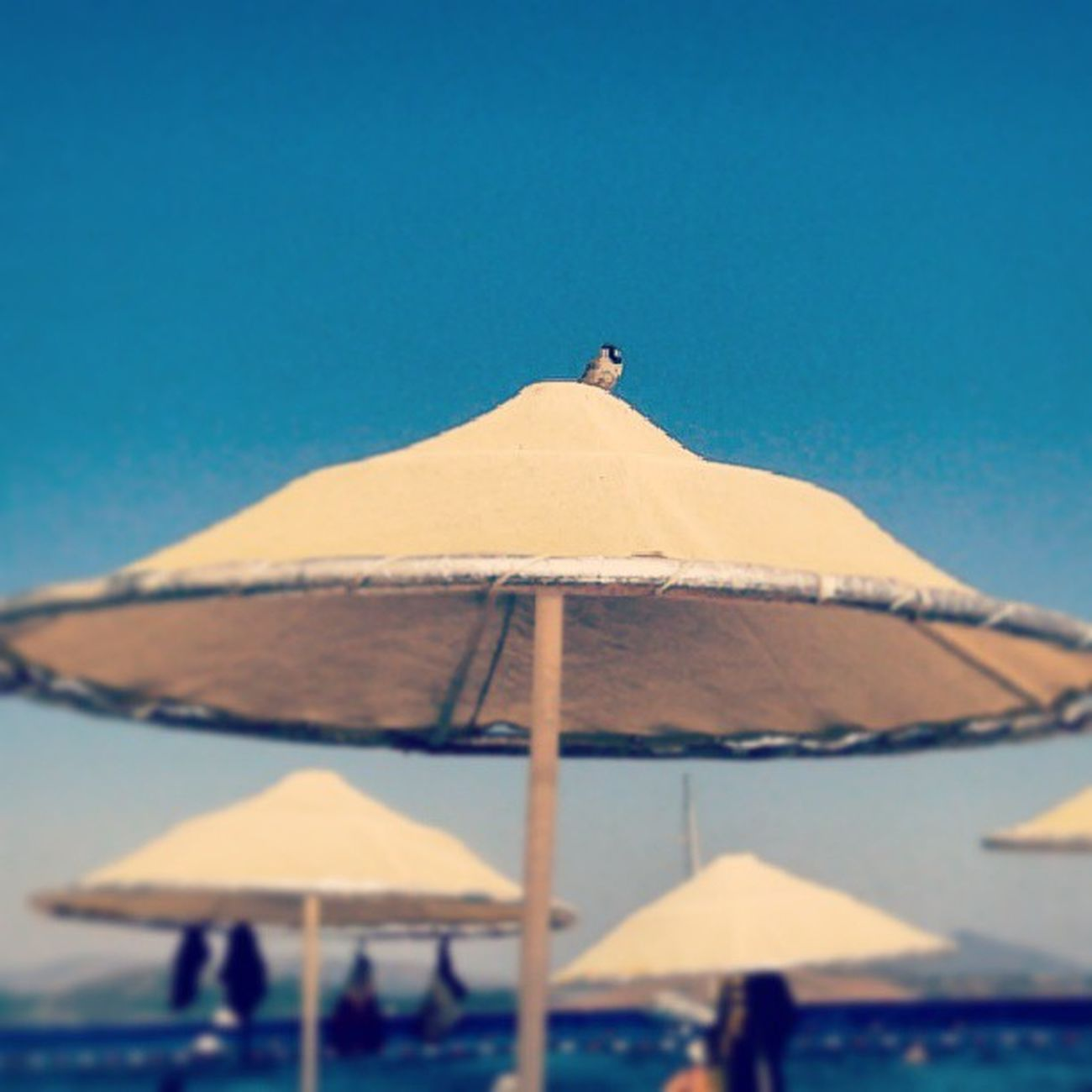Bodrum Yahşi Plaji