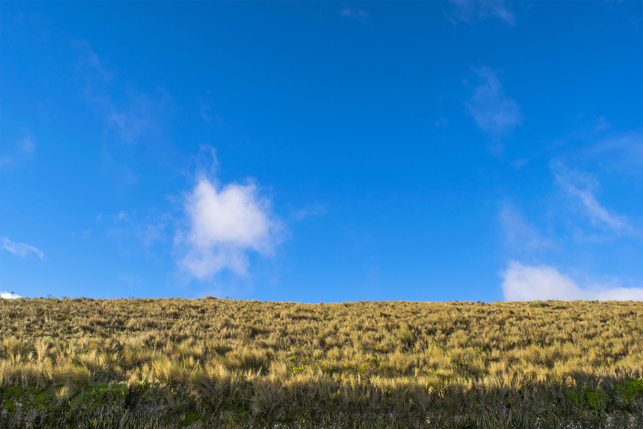 View Of Fields Against Blue Sky