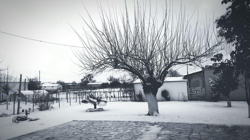 Karditsa  Greece Village Snow Winter Blackandwhite Bnw Blackandwhite Photography Bnw_captures Landscape