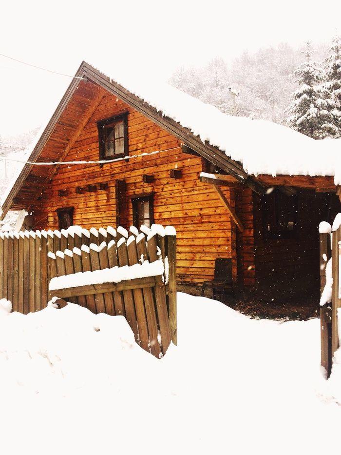 Bungalov Dağevi Bolu  Abant Winter Nature Winterday Snow YeniYıl Tatilkafası Gencgezginler ✌🏻