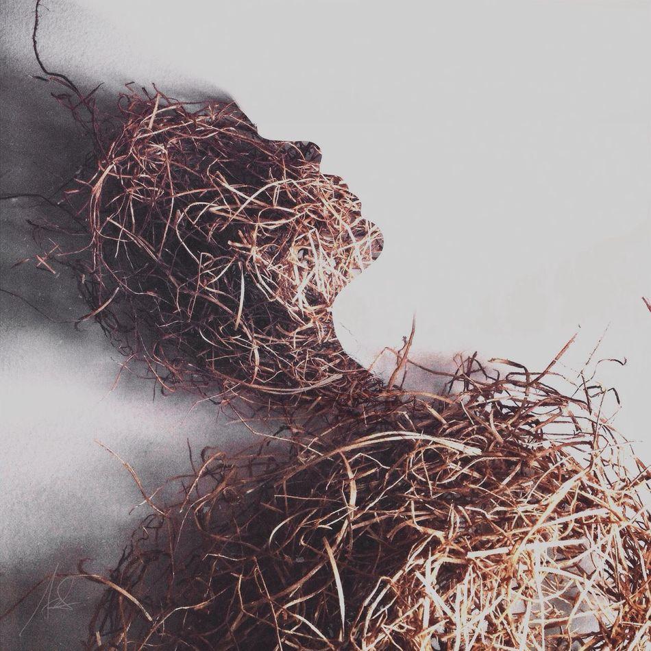 Scarecrow III WeAreJuxt.com Portrait Series IPhoneography Surrealism Shootermag Double Exposure