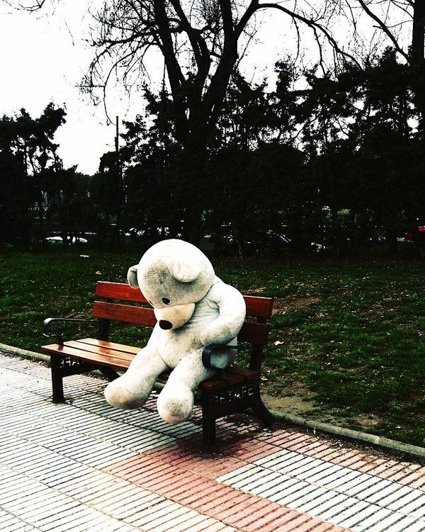 Outdoors Bear Peluche Soledad Solitario Getafe Lonely Loneliness Oso  Silence Silencio Tristeza