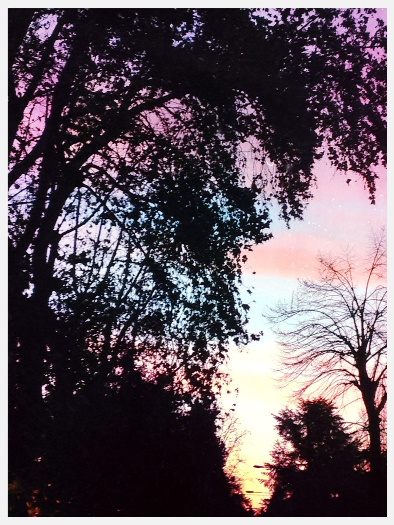 Morning! in Correggio Morning!