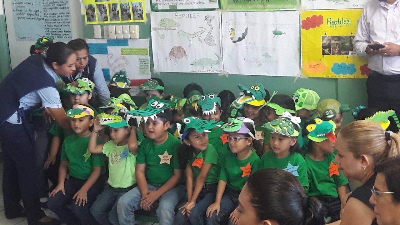 The Color Of School Tampico
