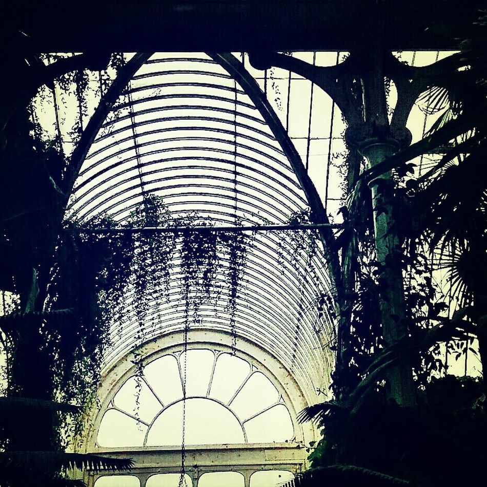 Palm House Victorian Wrought Iron And Glass Greenhouse 1848 Kew Gardens