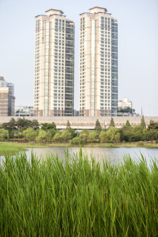 Architecture Building Building Exterior Built Structure City City Life Day Grass Green Color Growth Lake View Lake Views Lakeside Modern Nature No People Office Building Outdoors Plant River Sky Tall Tall - High Tranquility Water