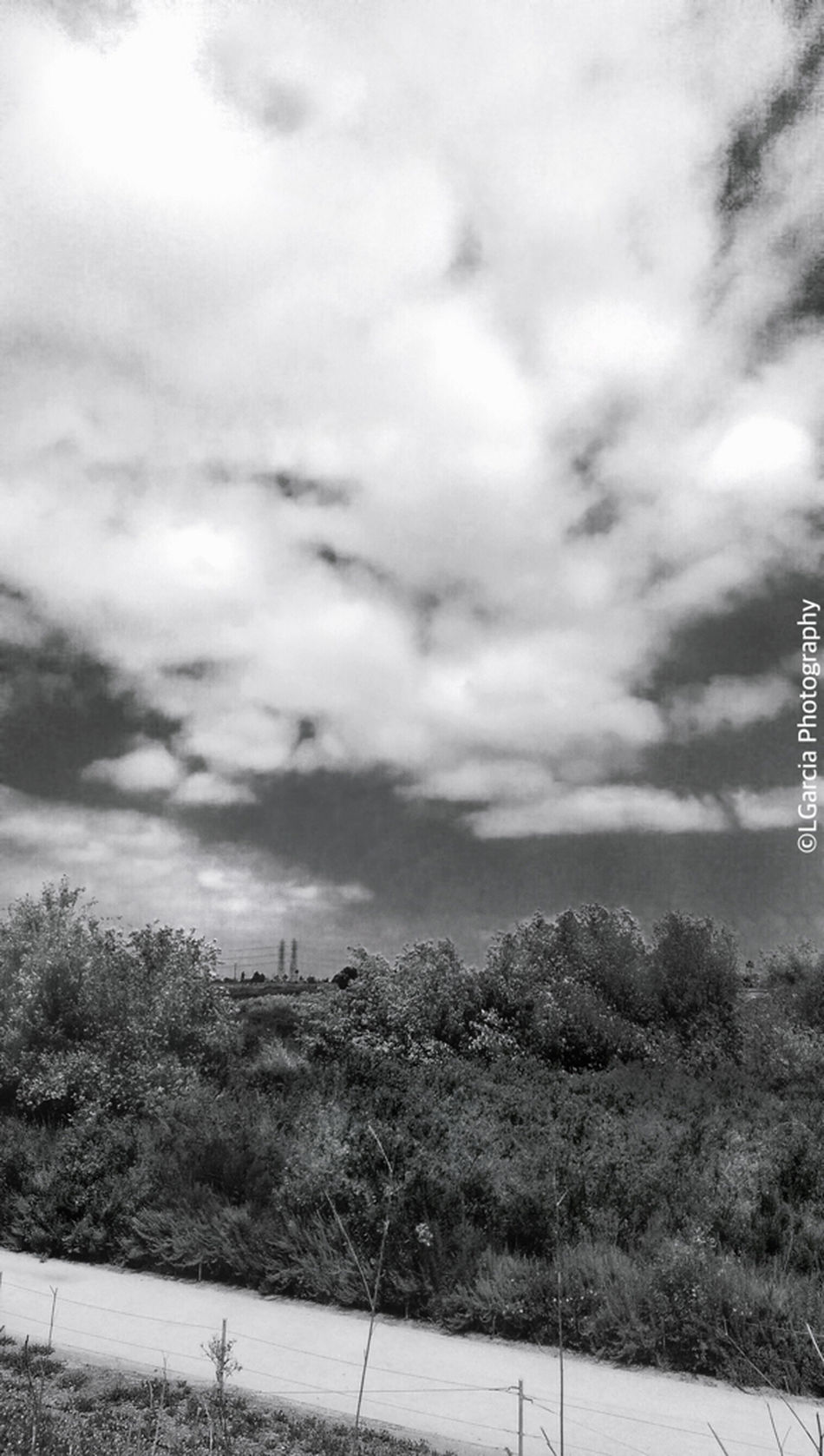 Fairview park in Orange County. Fairviewpark Fairview Park EyeEm Best Edits Urban Photography Clouds And Sky EyeEm Best Shots Monochrome Eye4black&white  Black And White Blackandwhite Photography LGarciaPhotography EyeEm Best Shots - Black + White Iphone 6 Plus Eye4photography  Hdr_Collection IPhone Iphonephotography Nature Nature_collection EyeEm Nature Lover Nature Photography IPhone Photography Light And Shadow HDR