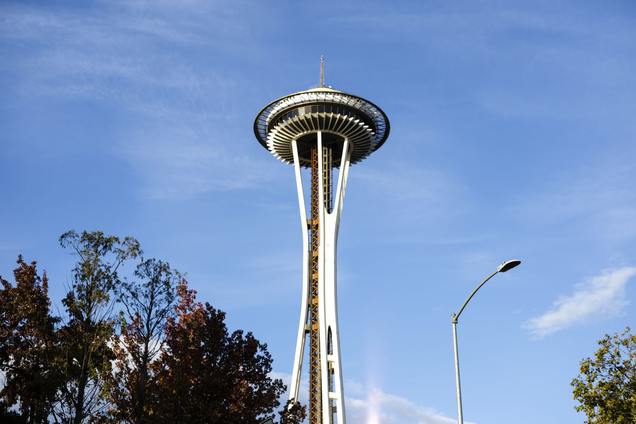 Low Angle View Sky Cloud - Sky No People City Tree Tower Outdoors Day FUJIFILM X-T1 Traveling Fujifilm_xseries Seattle Fujifilm Travel Autumn Space Needle