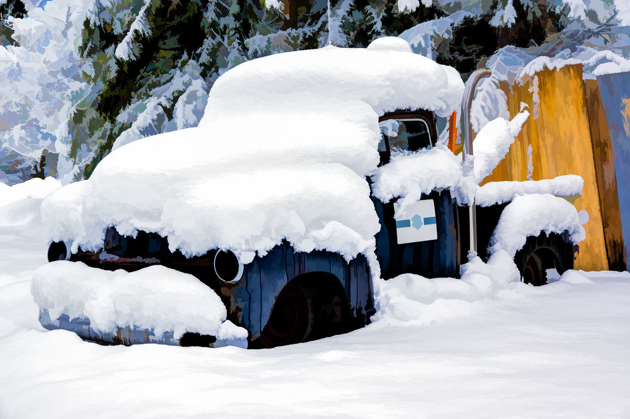 Beauty In Nature Car Cold Temperature Day Nature No People Outdoors Snow Tire Tow Truck Tree White Color Winter