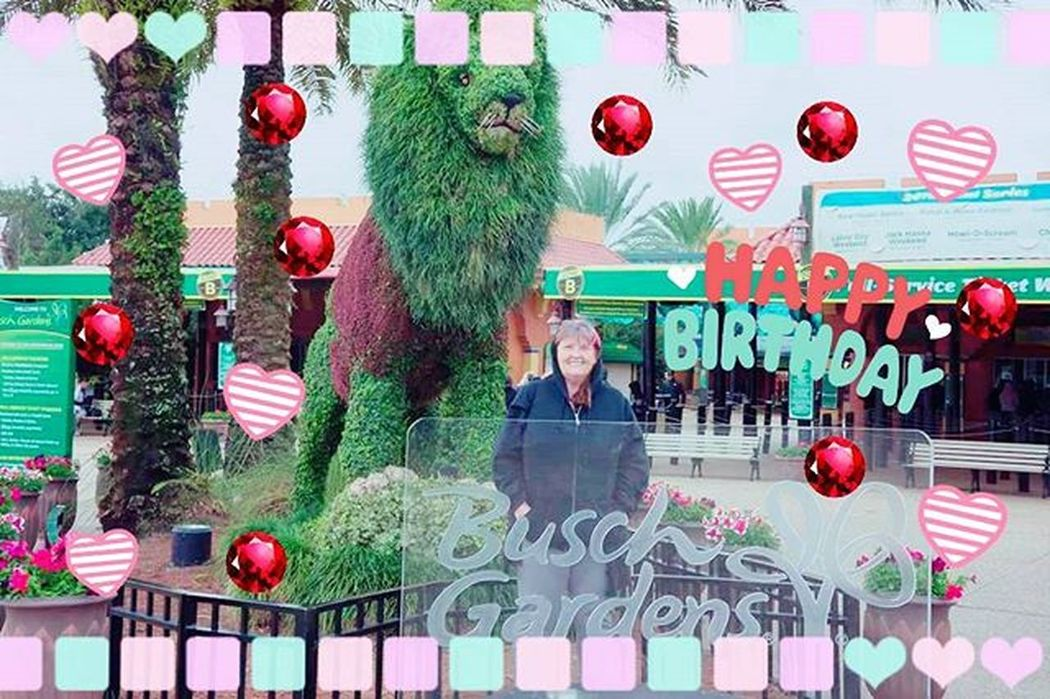Got bored at 2 am and decided to edit one of mom's birthday photos. Buschgardenstampa Happybirthdaymom