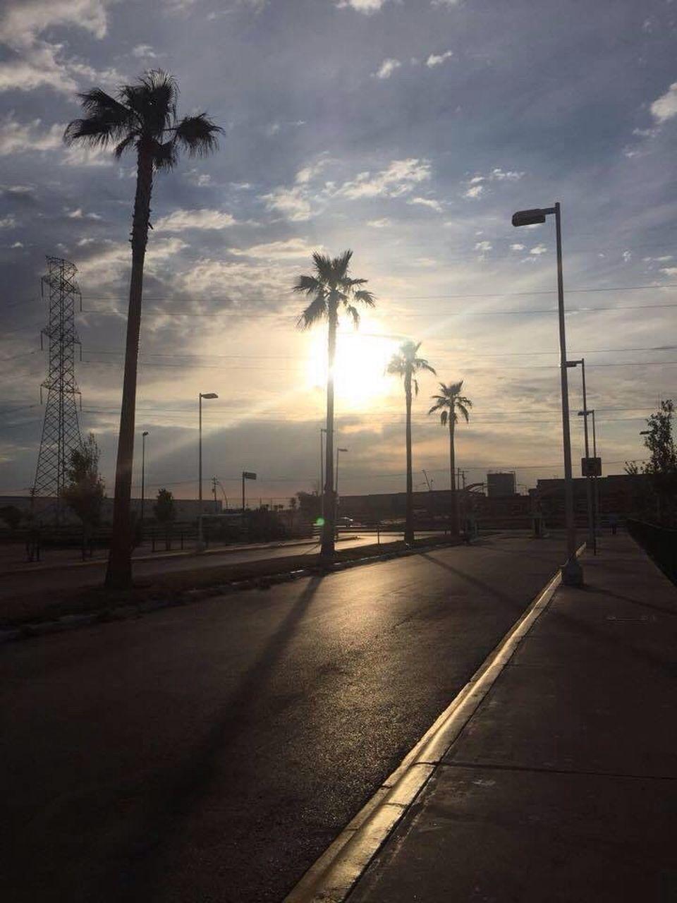 sunset, palm tree, transportation, sky, cloud - sky, road, street light, no people, tree, outdoors, nature, city, day