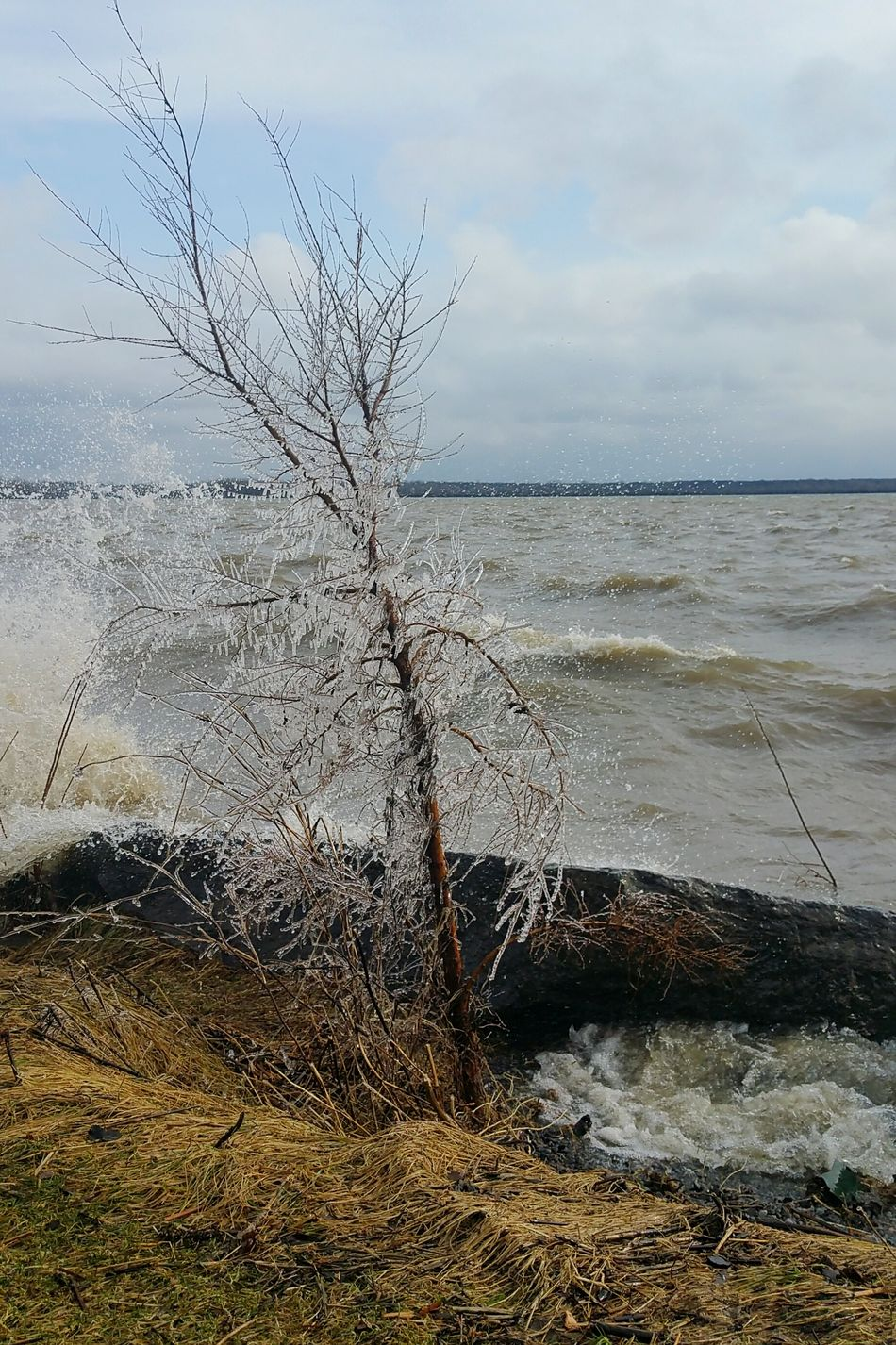 Springtime Windy Day Lakeshore Frozen Nature Lachine taken during windy day in lachine Showcase April