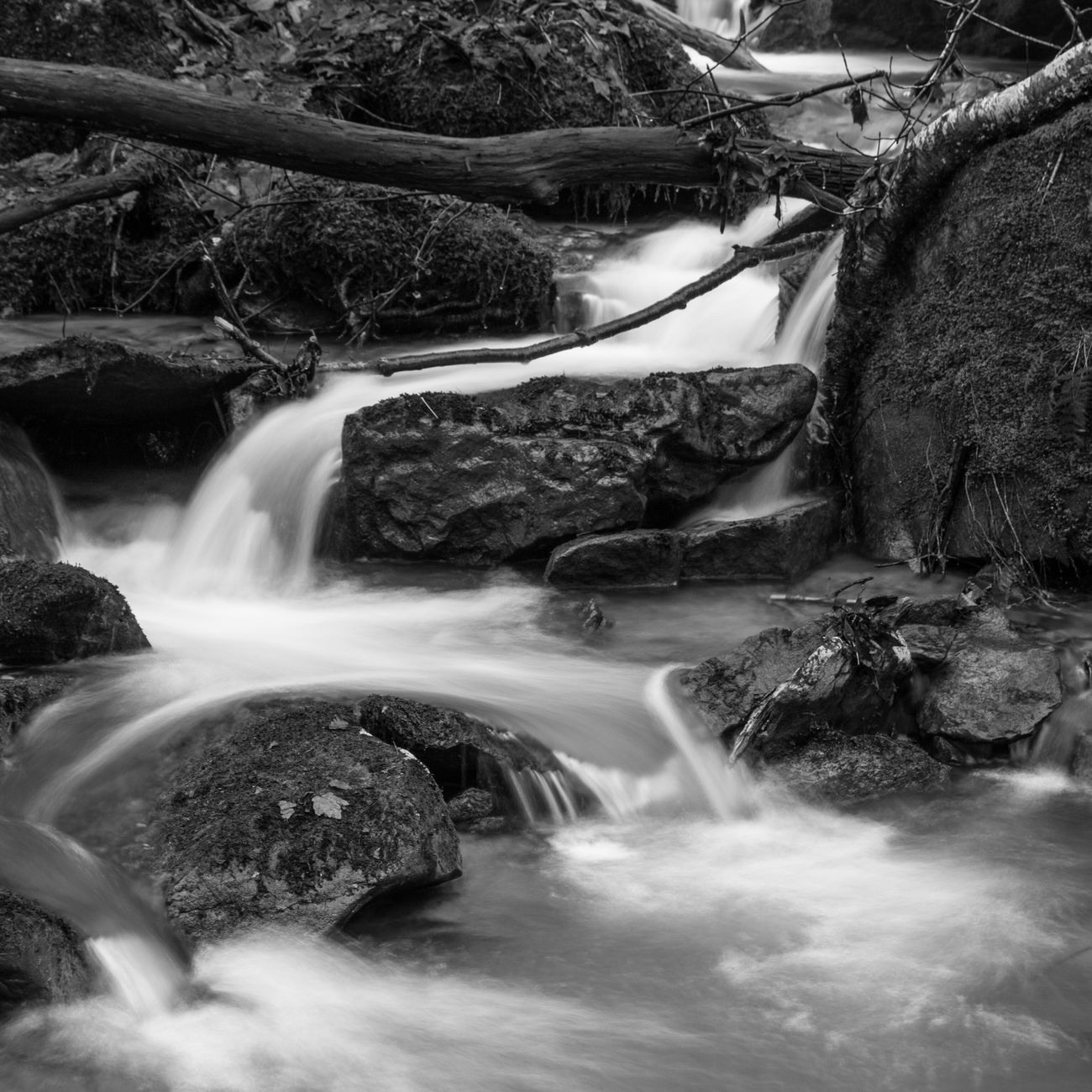 This was a stream alongside the North Country Trail, in the Allegheny National Forest in Pennsylvania. This was taken during our most recent backpacking trip. Long Exposure Waterfall Nature Water Scenics Flowing Water Forest Tranquil Scene No People Stream - Flowing Water Outdoors Beauty In Nature Winter Travel Photography Hiking Backpacking Allegheny National Forest National Forest Pennsylvania B&w