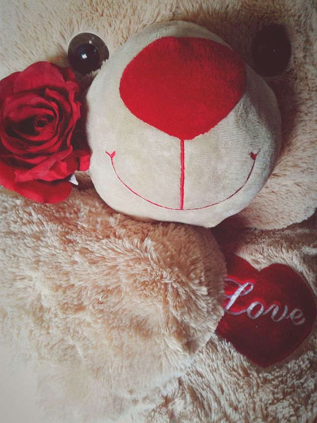 Love Red Close-up Animal Themes Indoors  No People Heart ❤ Stuffed Animals Valentine Day Valentine