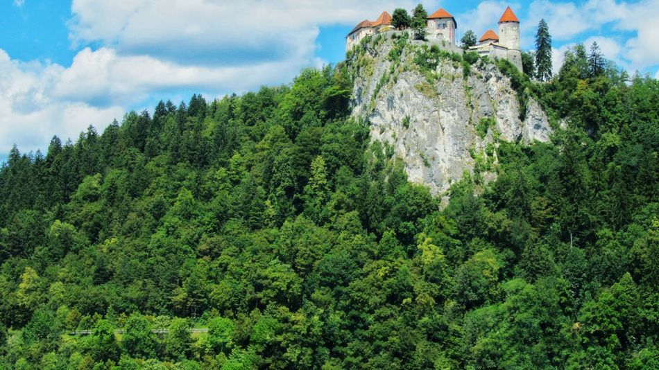 Travel Traveling Nature Beauty Tourist Attraction  Patterns In Nature Summer Slovenian Alps Slovenia Slovenia Scapes Mountains Castle Forest Travel Destinations High Europe Trip Tourism Mountain Range
