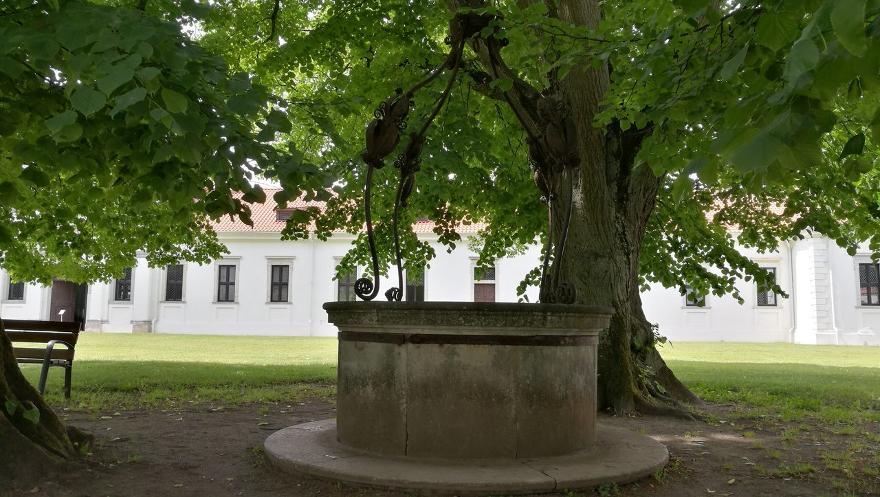 Tree Outdoors No People Architecture Well  Green Day Pazaislis Monastery