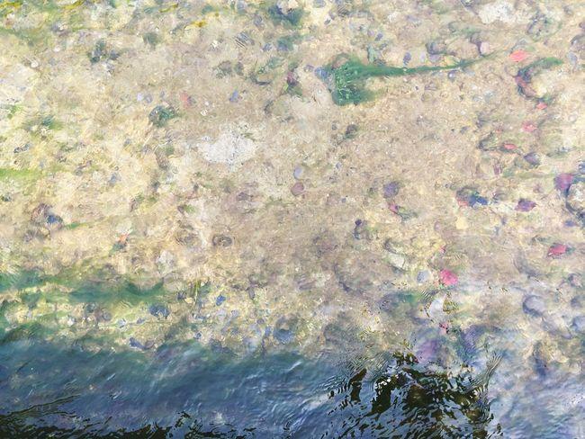 Stream Water Dreamy Pebble Pebbles クラムボン Fine Art Photography