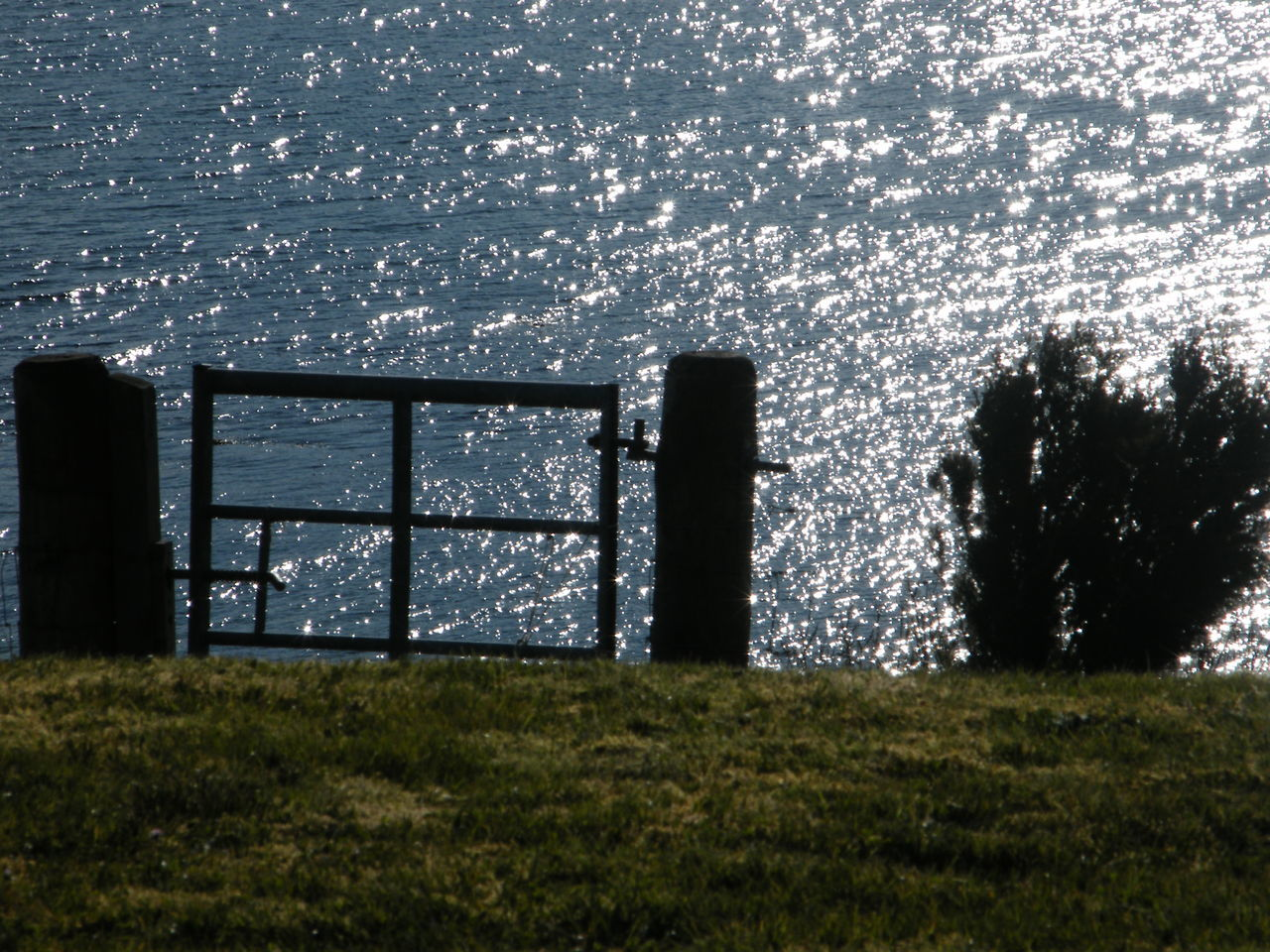 An Opening Beginning Of A Journey Caroy Jetty Close-up Day Footpath Garden Gate Grass Isle Of Skye Loch Caroy Nature No People Outdoors Scotland Sky Sun On The Sea Sun On Water  Water Waves