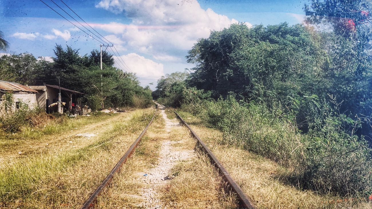 Autumn in Mexico. Landscape Autumn Colors Valladolid Mexico Yucatan Mexico Rail Transportation Railroad Track Abandoned Old Railway Line IPhoneography Iphoneonly Snapseed Snapseed Editing