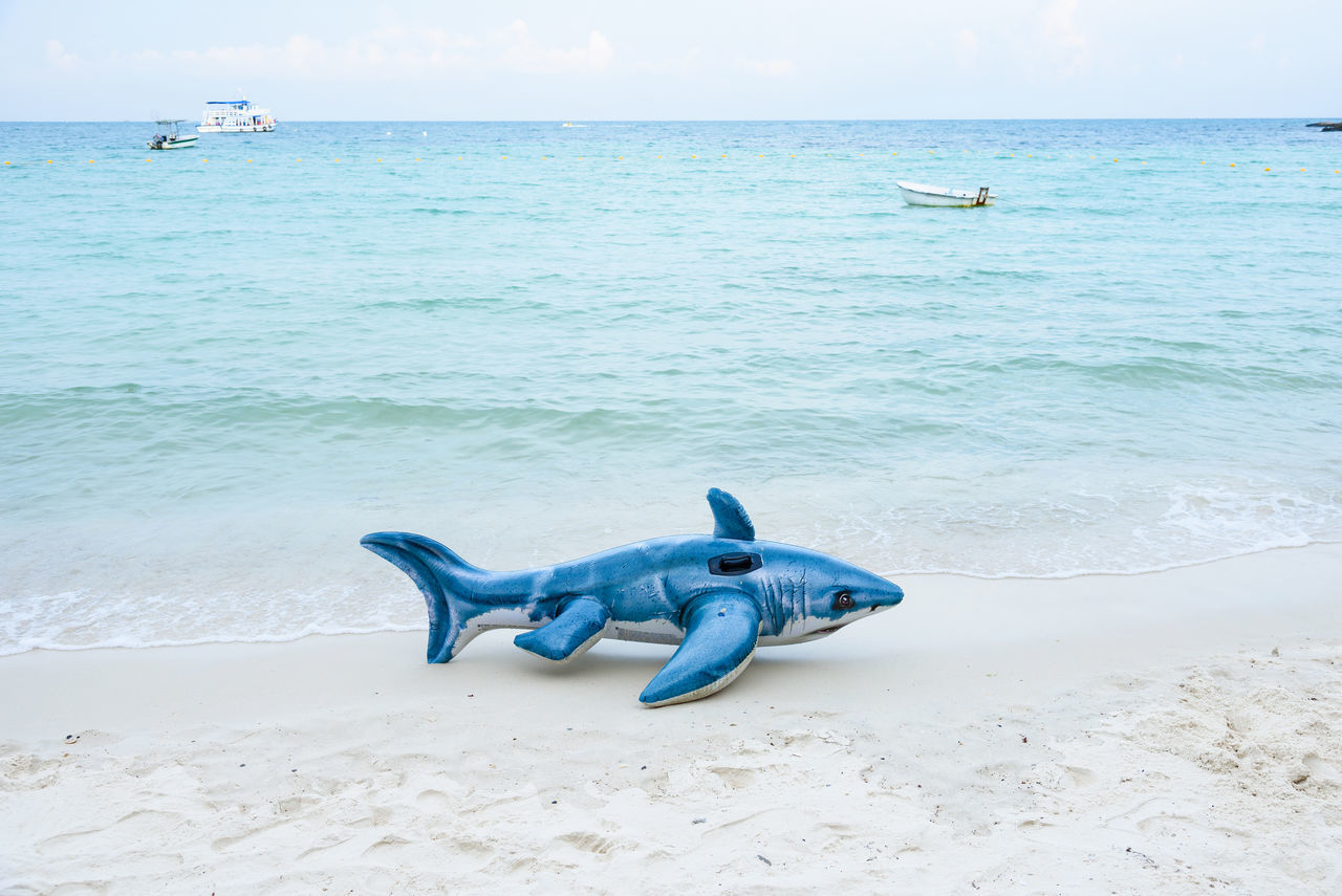 Rayong, Thailand - April, 28, 2017 : Shark inflatable pool toy on the beach at the Koh Samet island, Rayong, Thailand beach beauty in Nature blue day horizon over water Nature no people outdoors sand scenics sculpture sea sky water