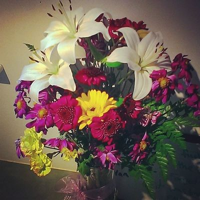 I think my boyfriend likes me Flowers ImSorry Bouquet Lovely beautiful color yesplease