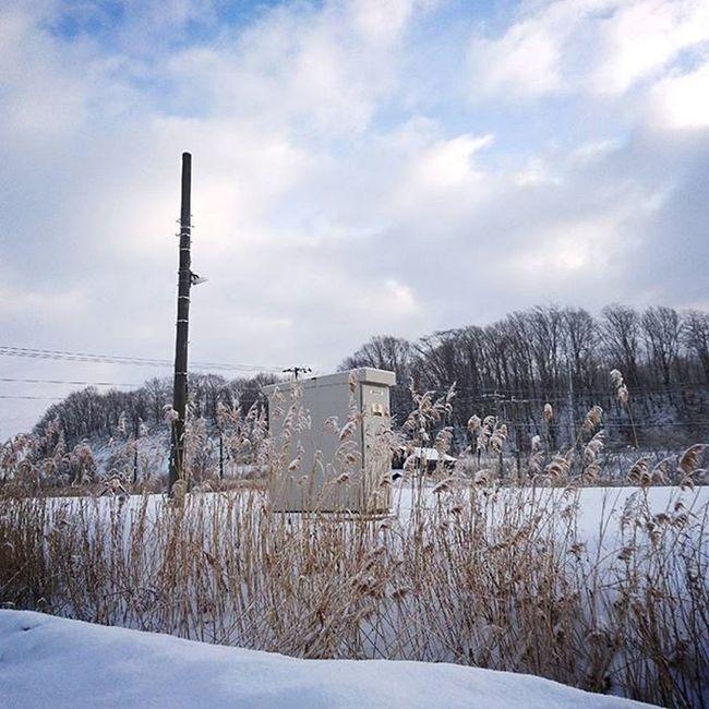 なおphoto いつかのphoto 線路沿い 石勝線 おはよー☀ 今日は お兄ちゃんの仮免の日🚗