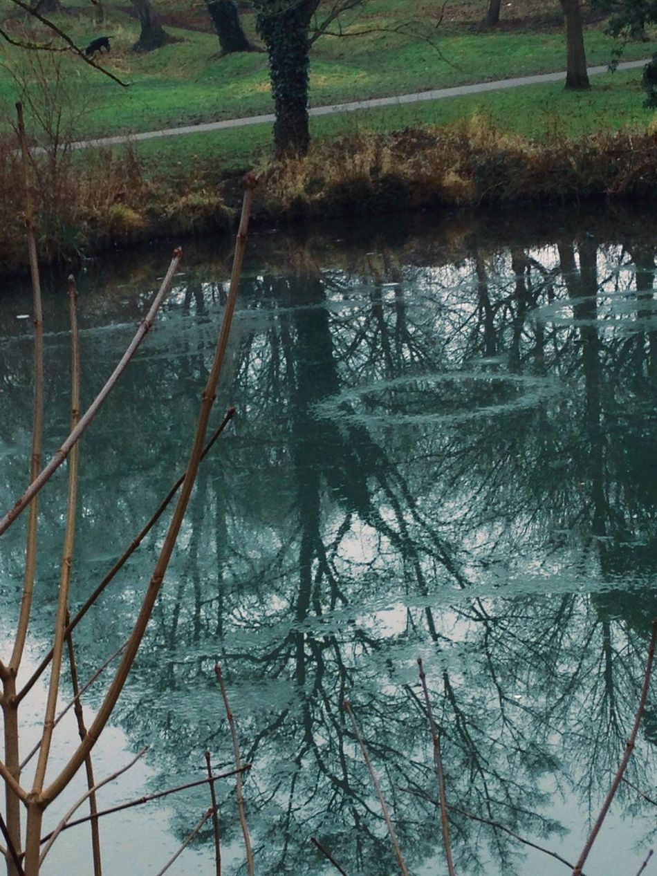Frozen circles. Frozen Cold Pretty Beautiful Colours Blue Lake Nature Winter