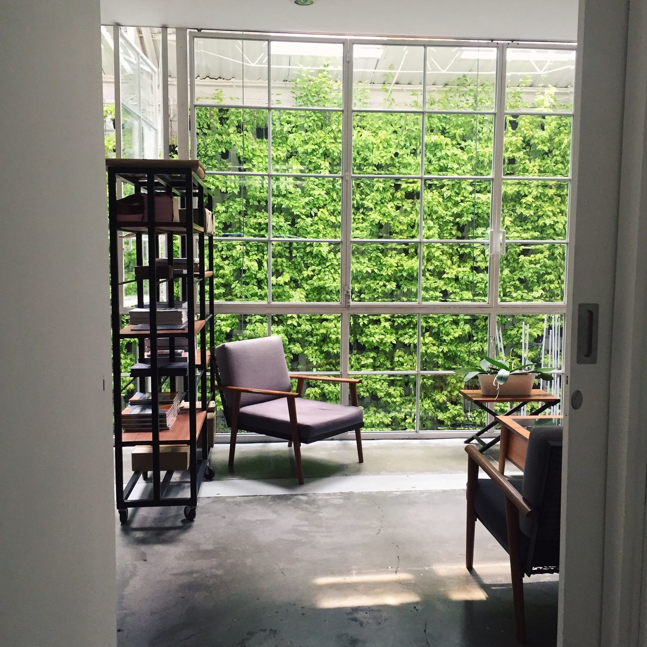 chair, window, indoors, home interior, table, no people, day, furniture, tree, nature